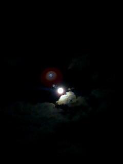 月がとっても蒼いから
