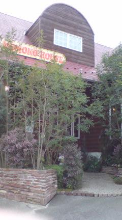 WOODY CARROT MOMOKO HOUSE